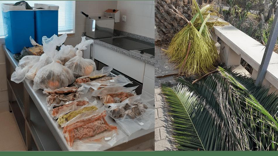 ENERMAC– Iniciativa de Valorização e Separação Diferenciada de bio-resíduos no Porto Santo